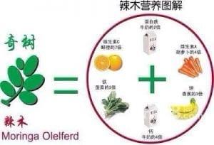 辣木籽不要胡乱食用,吃多了伤肝和其他副作用2
