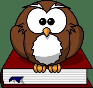 owl-0