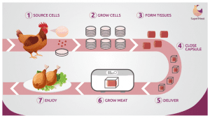 infographic_supermeat